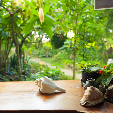 shaktivating-retreat-costa-rica-kitchen-pura-vida