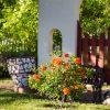 shaktivating-retreat-mount-shasta-goddess-town-women-summer-sunny-flowers
